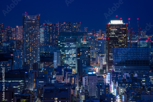 Poster Tokyo Night view of Tokyo - 東京の夜景1