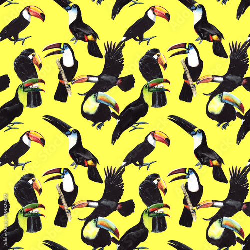 Poster Sky bird toucan pattern in a wildlife by watercolor style. Wild freedom, bird with a flying wings. Aquarelle bird for background, texture, pattern, frame, border or tattoo.