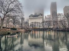 Central Park, New York City Winter