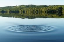 Ripples In Mirror Lake Water