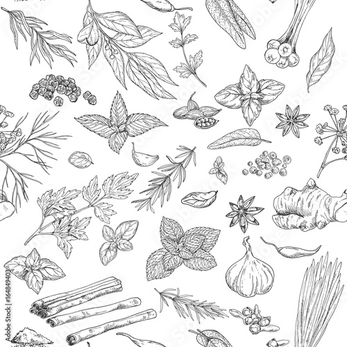 Seamless pattern with hand drawn culinary herbs and spices Canvas Print