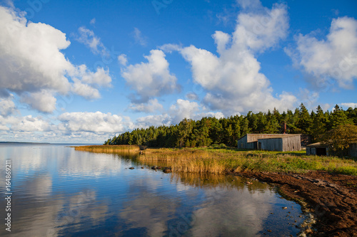 Foto op Canvas Herfst Baltic sea coast at sunset. Dramatic clouds, forest view.