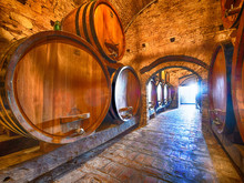 Winery Cellar With Special Edition Wine Aging In Barrels For A Few Years Until It Is Ready At Barolo Vineyard