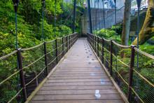Beautiful Bridge At Hakone Open Air Museum In Japan