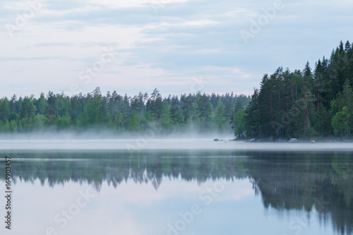 Tuinposter Purper Foggy calm lake and forest at summer night