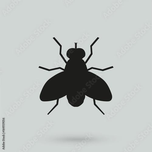 Valokuva  Fly vector icon