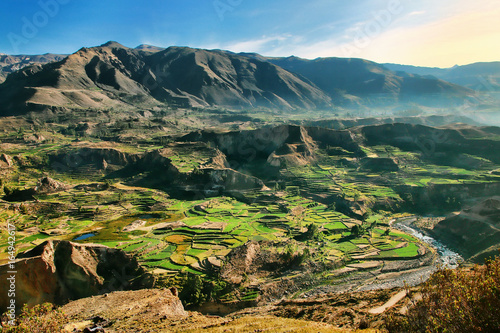 Spoed Foto op Canvas Canyon Stepped terraces in Colca Canyon in Peru