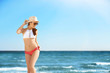 Beautiful young woman in bikini near sea on sunny day