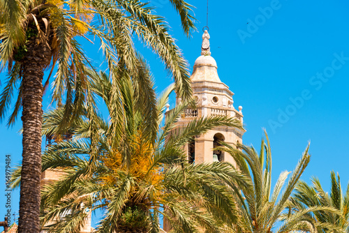 Palm trees close-up, in the background a tower of the church of Sant Bartomeu and Santa Tecla in Sitges, Barcelona, Catalunya, Spain Canvas Print