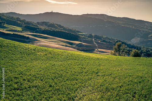 Fotobehang Heuvel Cultivated hills near Monghidoro, Bologna province, Emilia Romagna, Italy