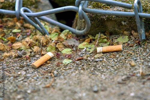 Fotografie, Obraz  cigarette butts. Smoking is harmful to health.