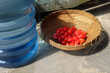fruits and water - basket of fresh red rose apple and a blue water gallon