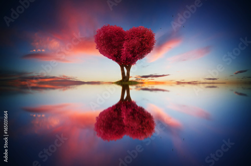 Foto op Plexiglas Crimson Abstract image of lonely red color leaf and love shape tree at sunrise scene with reflection in water.