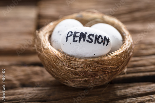 Pension Written On White Egg In Nest