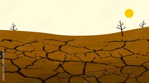 Fotografia Dry cracked land in the farming field