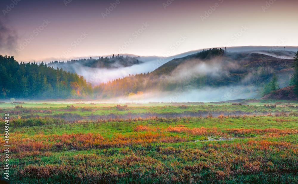 Fototapety, obrazy: Colorful landscape of the Coquille River Valley in Southern Oregon, USA