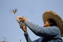 Woman Releasing Bird From Cage At Buddhist Temple. Vietnam.