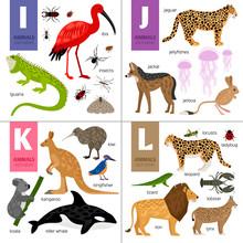 Alphabet With Cute Animals:  I...