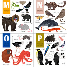 Alphabet With Cute Animals: Ma...