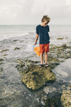 Boy Catching Crabs On Rocky Sh...
