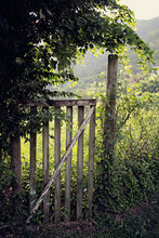 Old Wooden Gate And Fence