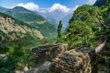 Fototapeta na wymiar つり橋とアンナプルナ (ネパール)