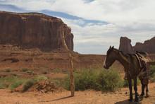Cavallo Monument Valley