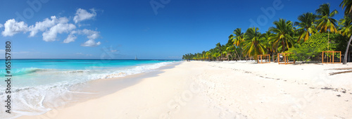 Poster Tropical plage Isla Saona tropical beach panorama
