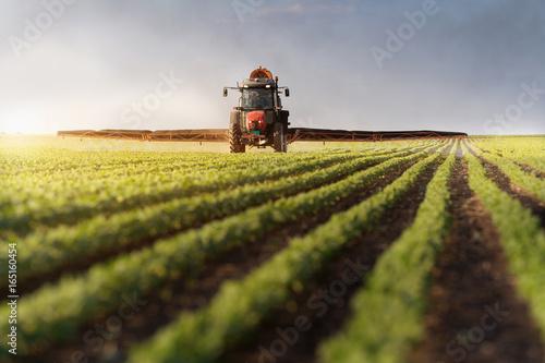 Tractor spraying soybean field Wallpaper Mural