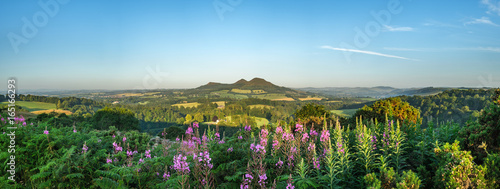 Canvas Prints Blue Scott's View looking to the Eildon Hills in the Scottish Borders. Scotland UK, Europe