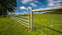 Fence And Gate Surrounding A C...