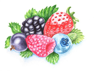 Summer berries watercolour hand-painted illustration