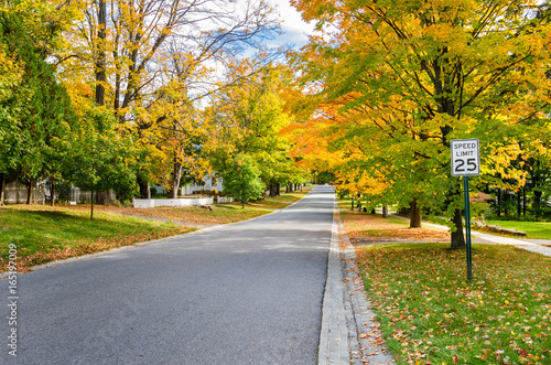 Fotografía  Street Lined with Autumnal Trees in Bennington, Vermont.