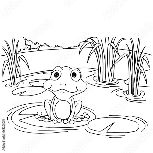 Frog Jump To Pond After Sit On Lily Pad Coloring Page : Color Luna   500x500