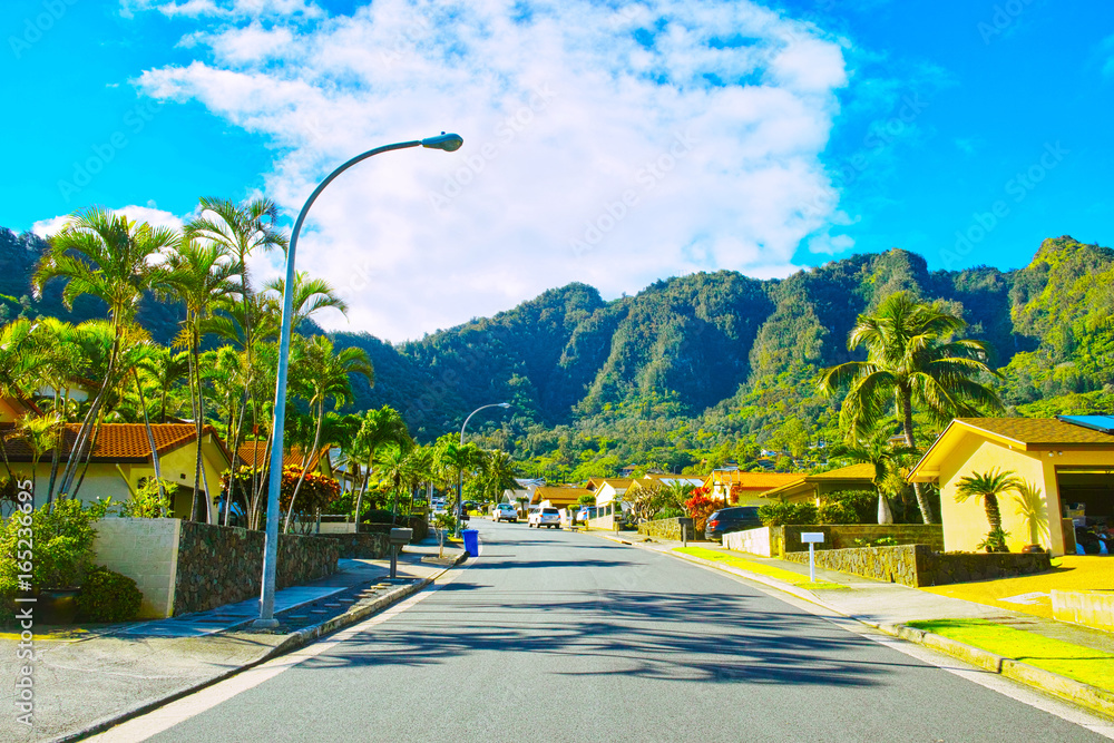 Fototapeta ハワイ ハワイカイの住宅地