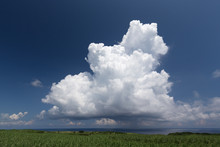 湧き上がる積乱雲とサトウキビ畑