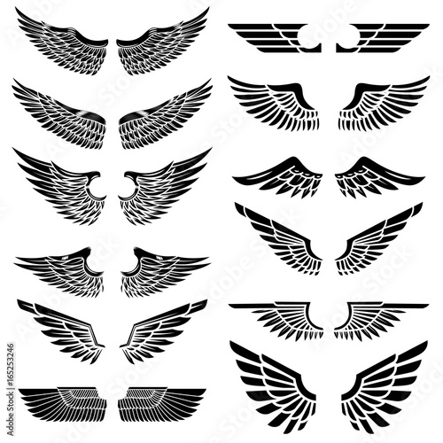 Foto  Set of the wings isolated on white background