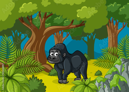 Spoed Fotobehang Kinderkamer Gorilla living in deep forest