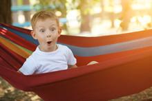 Cheerful Little Boy In Hammock...