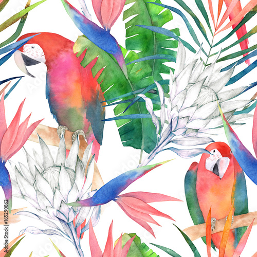 Tropical seamless pattern with parrots, protea and leaves. Watercolor summer print. Exotic hand drawn illustration