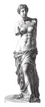 Aphrodite Of Milos - Venus - V...