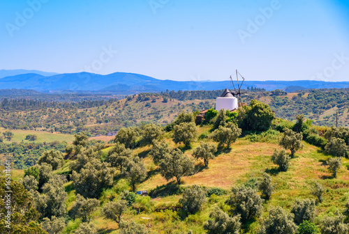 Alentejo in Portugal mit Windmühle Canvas Print