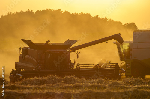 Staande foto Meloen harvesting combine harvesting golden ripe wheat field in light of the setting sun in Germany