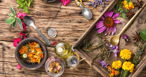 long poster with healthy herbs Canvas Print