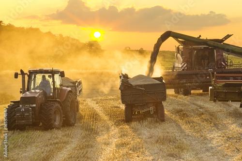 Zdjęcie XXL zbioru połączyć kombajn złote pole pszenicy dojrzałe w świetle zachodzącego słońca w Niemczech