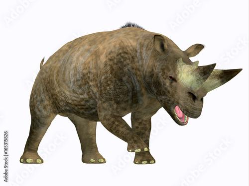 Fototapeta premium Arsinoitherium Mammal Side Profile - Arsinoitherium was a herbivorous rhinoceros-like mammal that lived in Africa in the Early Oligocene Period.