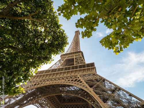 Fototapety, obrazy: The Eiffel tower in Paris on a background of blue sky and tree, big plane.
