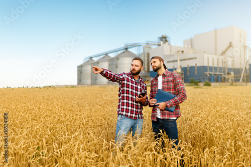 Photo Smart farming using modern technologies in agriculture