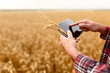 canvas print picture - Smart farming using modern technologies in agriculture. Man agronomist farmer with digital tablet computer in wheat field using apps and internet, selective focus