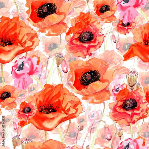 Plakat Wildflower kwiat maku wzór w stylu przypominającym akwarele. Pełna nazwa zakładu: mak. Aquarelle dziki kwiat dla tła, tekstury, opakowania wzór, rama lub granicy.